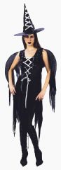 Gothic Witch Fairy Costume